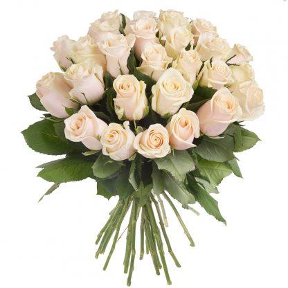 30 weiße Rosen